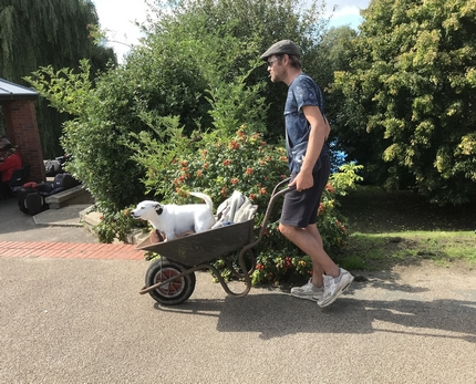 man pushing dog in a wheelbarrow